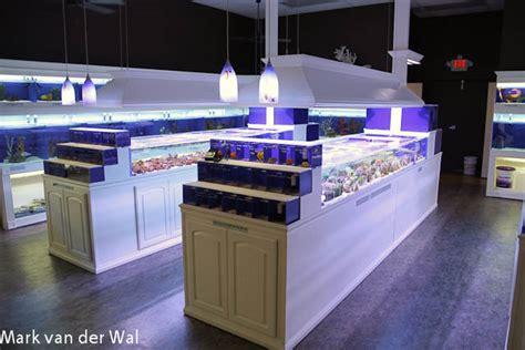 aquarium design store fish store design pure reef in alpharetta georgia is a