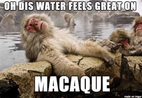 Flying Monkeys Meme - ahhh yiss meme guy