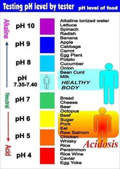 proper ph balance is critical for good health ap on pinterest nervous system autonomic nervous system