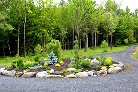 circular driveway evergreen landscaping ideas conifers pinterest landscaping solar and