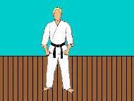 imagenes gif karate im 225 genes gif de artes marciales karate kung fu judo