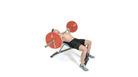 incline bench press benefits 17 jaw dropping benefits of the incline decline bench press