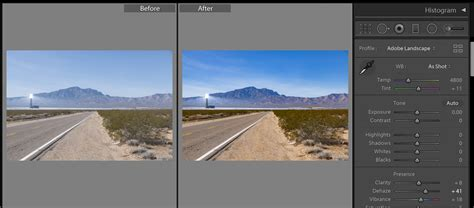 lightroom profiles in lightroom and photoshop adobe puts profiles and