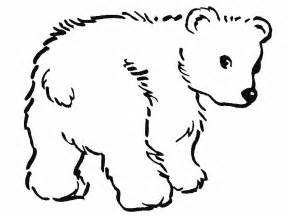 coloring page for black bear gallery