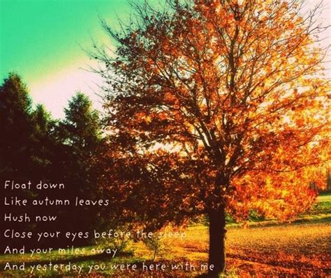 Bedroom Karate Lyrics Best 25 Autumn Leaves Lyrics Ideas On Canning