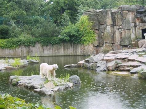 Zoo Garten Berlin by Berlin Zoo Station Front Picture Of Zoologischer Garten Berlin Zoo Berlin Tripadvisor