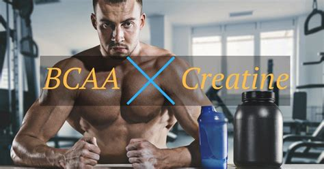 creatine and bcaa bcaa vs creatine what is the best for you
