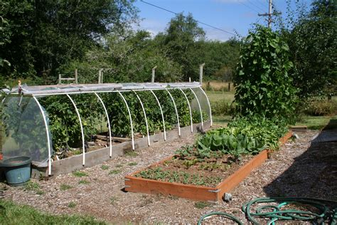 what is the best wood to use for raised garden beds