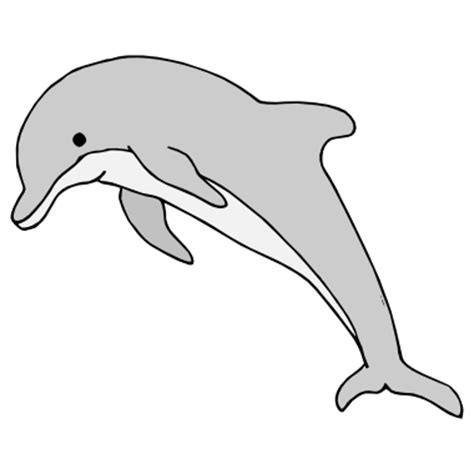 dolphin cut out template dolphin cut out template