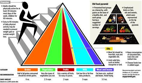 Food Makanan Anjing H D Supreme Irland 12 5kg Frshpck 1 the new food pyramid washingtonpost