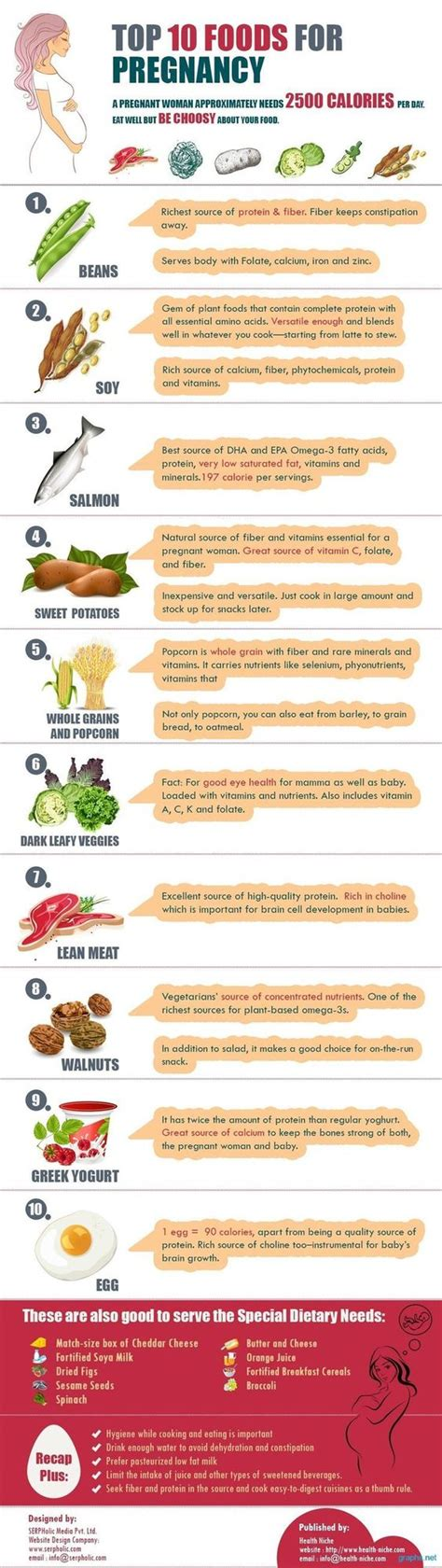 s protein in pregnancy the 10 best foods to eat while protein food