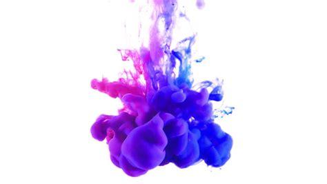 purple paint law purple paint purple splatter paint viewing gallery paint