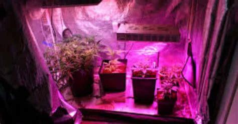 small grow tent    setup fan filter light