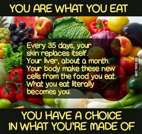 what do you get if you eat christmas decorations you are what you eat j every 35 days your skin replaces itself your liver about a month your