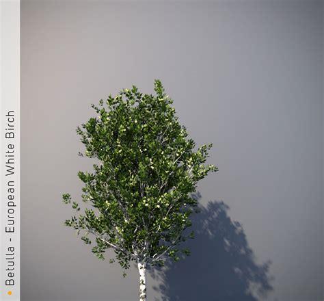 trees volume 2 1632155222 archiradar trees volume 01