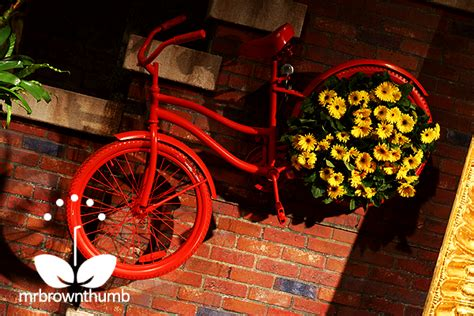 mind blowing bicycle planter ideas   garden