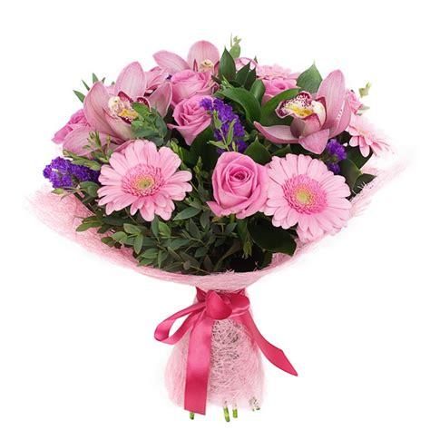 come mandare fiori a domicilio orchidee invio e consegna di orchidee a domicilio in italia