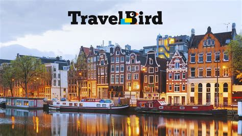 travel bid travel bird happy deals