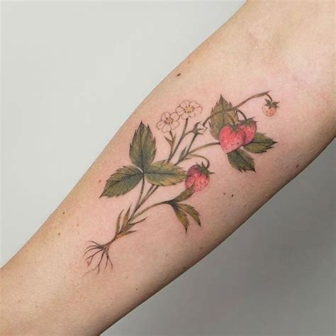 strawberry tattoos designs best 25 strawberry ideas on bloom