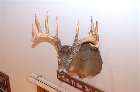 World Record Deer Rack by Big Bucks Boone And Crockett Will Score King Buck As