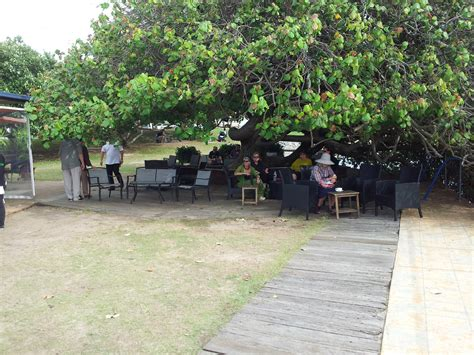 the boat shed sunshine coast - The Boat Shed Cotton Tree
