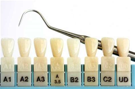tooth color chart tooth shade chart shade guide 3d master r20 shades teeth
