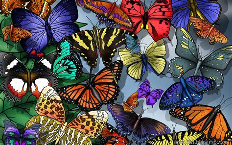 Wallpaper Flowerbutterfly Code No001 Butterfly Design Wallpapers Free Wallpapers