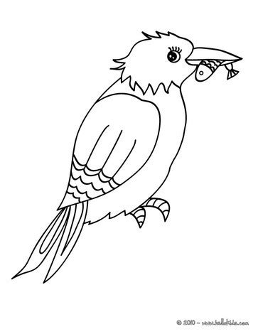 kingfisher coloring pages common kingfisher coloring pages hellokids com
