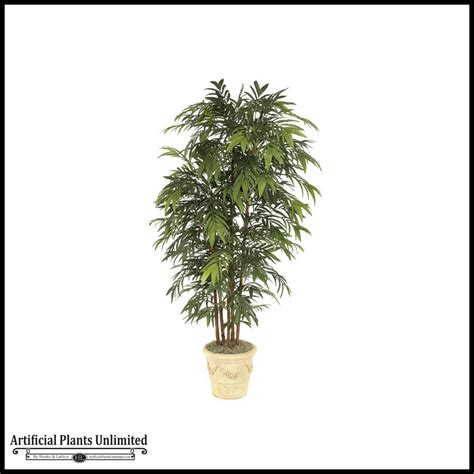 8 bamboo palm tree green indoor