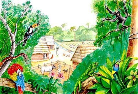 imagenes de ecosistemas faciles para dibujar f unidad 4 relaciones en los ecosistemas natubelalc 225 zar