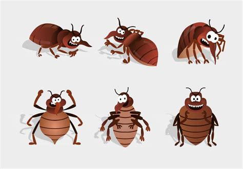 bed bug cartoon cartoon bed bugs extermination pictures inspirational