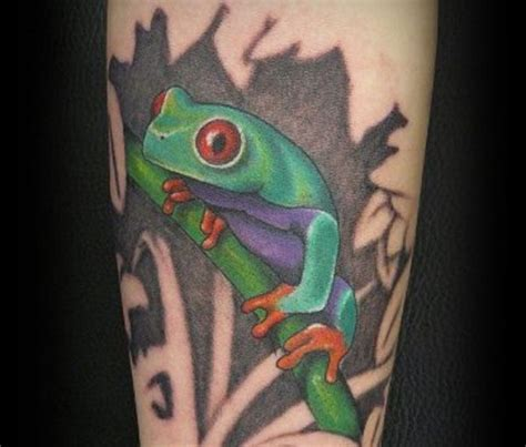 tree frog tattoo designs eyed tree frog 30 brilliant frog tattoos my ink