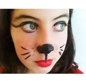 Material Necesario Para Hacer El Maquillaje De Gato