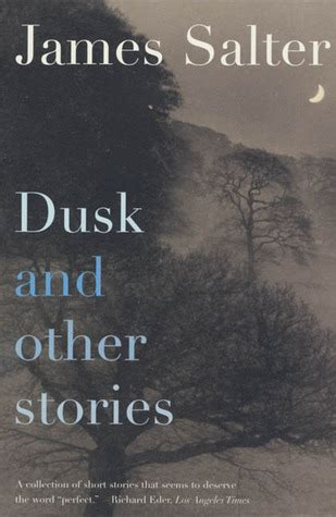 1 and other stories books dusk and other stories by salter reviews