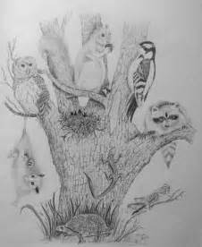 nature pencil drawing tree of life with a variety