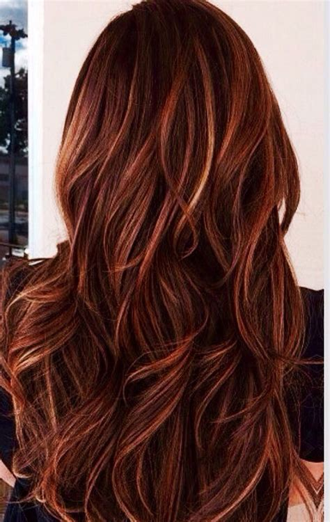 dark brown hair with mahogany highlights 25 best ideas about mahogany highlights on pinterest