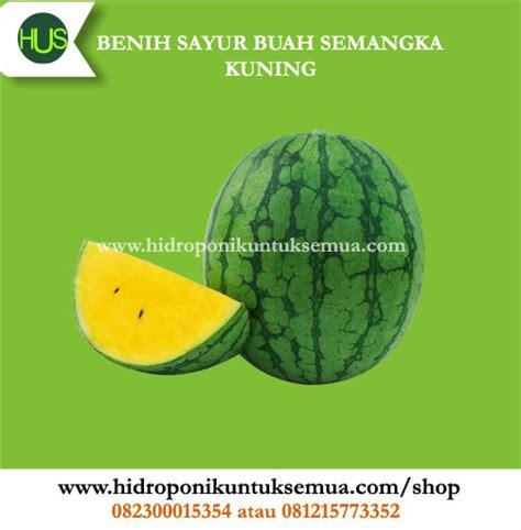 Benih Buah Semangka benih sayuran buah semangka kuning jual alat bahan media