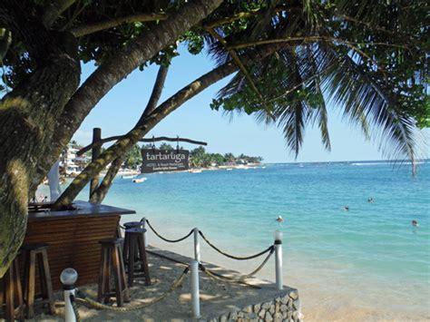 catamaran hotel dog friendly epic sunset beaches surf south sri lanka