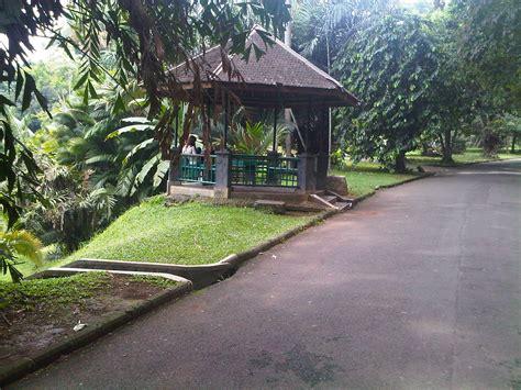 Timer Untuk Lu Taman rute keliling kebun raya bogor yang tidak melelahkan