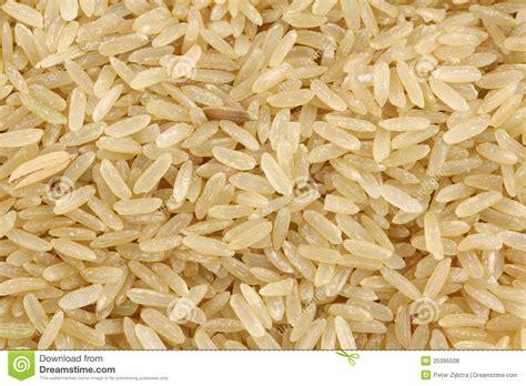 Unpolised Rice With Lotus Seed unpolished rice whole grain royalty free stock photos image 25395508