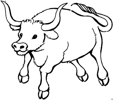 Ox Coloring Page Free Coloring Pages Of An Ox