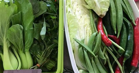 Harga Sayur Segar by Wanita Ini Dedah Rahsia Sayur Kekal Segar Dalam Masa 3