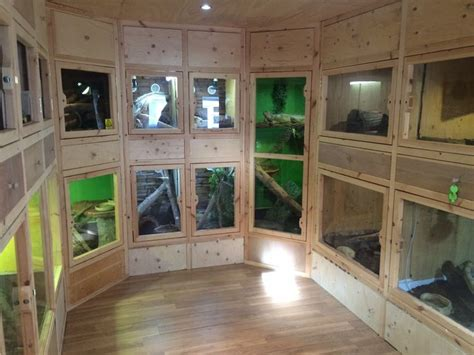 reptile room 33 best diy for the reptile hobbyist images on