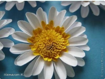 How To Make Paper Daisies - cool creativity how to make paper daisies