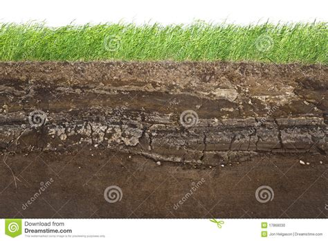 soil section grass and soil layers isolated on white stock photo