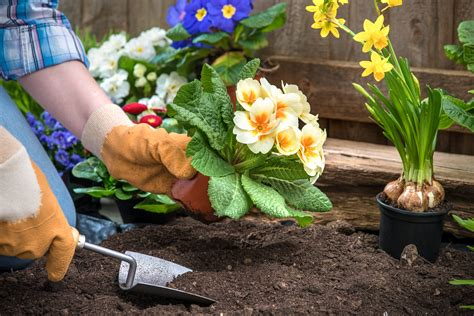 Gardening While The Therapy Center Preventing Injury Helpful Tips While
