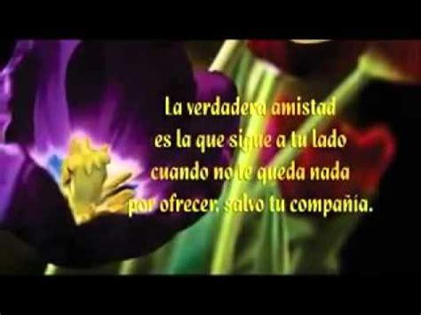 imagenes con movimiento para wasap flores en movimiento youtube