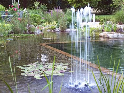 how to make a small pond in your backyard how to build your own garden pond realestate com au