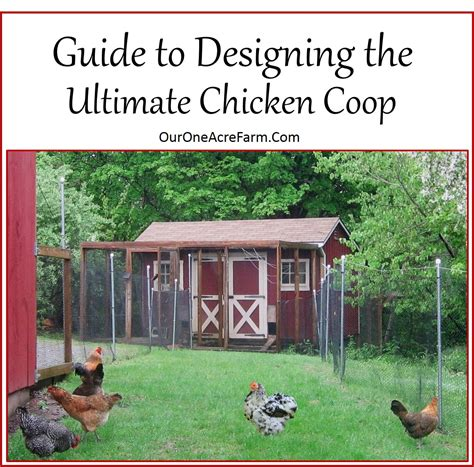 Front Yard Vegetable Garden by Guide To Designing The Perfect Chicken Coop