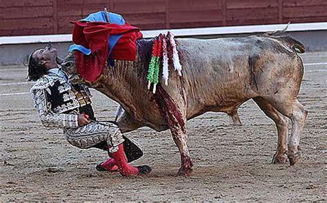 granero bullfighter julio aparicio 1 la cogida de julio aparicio en las